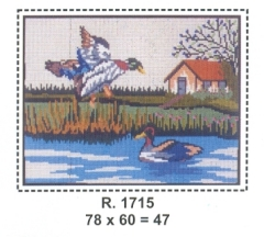 Tela R. 1715