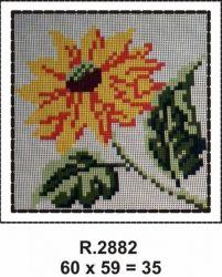 Tela R. 2882