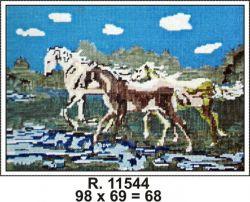 Tela R. 11544