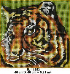 Tela R. 11853