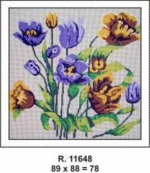Tela R. 11648